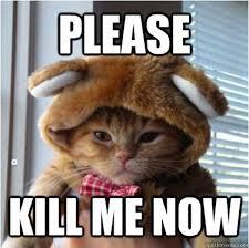 20 Kill me memes | Bajiroo.com via Relatably.com