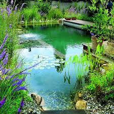 natural looking in ground pools. Natural Eco Pool DIY Looking In Ground Pools F