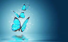 Butterfly Background Desktop Wallpaper ...