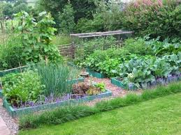Small Picture 413 best Garden images on Pinterest Garden ideas Gardening and