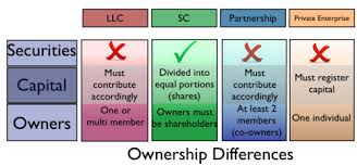 forms of ownership corporate law in vietnam wikipedia