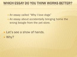 the college application essay unit ppt video online  which essay do you think works better