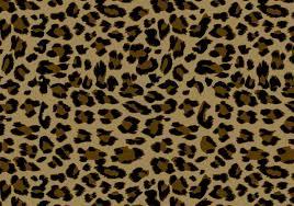 Leopard Pattern New Leopard Pattern Free Photoshop Patterns At Brusheezy