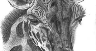 Disegno Matita Archives Page 223 Of 231 Disegno Arte