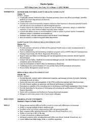 Health Informatics Specialist Sample Resume Healthcare Consultant