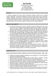 Cv Writing Examples Personal Profile Perfect Resume Format