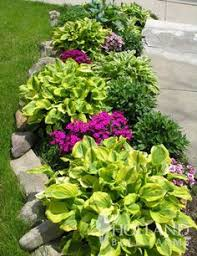 Small Picture Low Border Plants plants are an important part of any garden