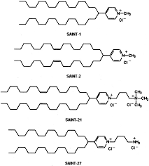 molecular shape of the cationic lipid