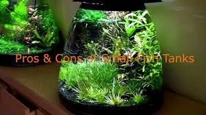 Nano Aquariums A Look At The Best Small Fish Tanks