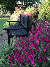 Small Picture Best 80 My Garden In Australia images on Pinterest Gardening