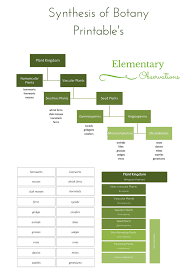 Elementary Observations Botany Classifying