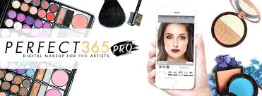 Face Chart Makeup App Whatsappindir Co