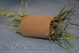 diy guinea pig toy hay treats