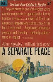 separate peace essay a separate peace essay