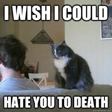 I WISH I COULD HATE YOU TO DEATH - Neglected Vacation-Cat still ... via Relatably.com
