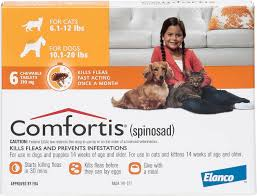 what is comfortis. Brilliant What Video On What Is Comfortis T