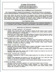 software sales executive resume example resume headline samples