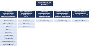 Goldman Sachs Organizational Chart 2015 Team Ashoka India Equity Investment Trust Plc
