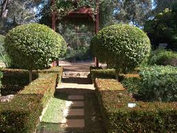 The New Formal Garden With Australian Plants Gardening With Angus