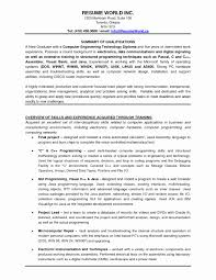 Good Resume Format For Experienced It Professionals Best Of 46