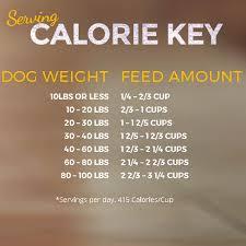 Zignature Feeding Chart Zignature Catfish Formula Dry Dog Food