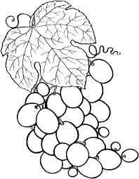 Coloriage Grappe De Raisins Imprimer