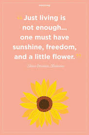 Flower Quotes Awesome 48 Inspirational Flower Quotes Cute Flower Sayings About Life And Love