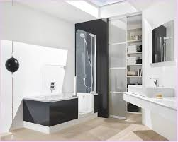 amazing bathtubs idea inspiring walk in bathtub shower combo walk in cute photo bathtub and shower in same room