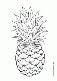 pineapple drawing. pineapple drawing g