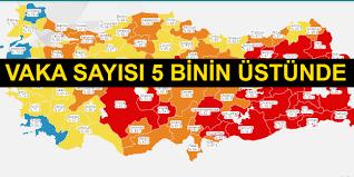 Türkiye'de koronavirüsten 37 kişi daha hayatını kaybetti