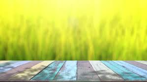 table top background hd. table top and blur nature of background - hd stock footage clip hd shutterstock