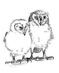 Small Picture Barn Owl coloring page Animals Town animals color sheet Barn