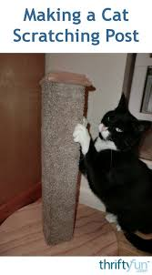 how to stop cat scratching carpet best of diy carpet covered cat scratching post of