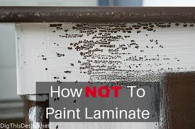 painting laminate furnitureHow to Paint Laminate Furniture Ace Hardware 31 Days of Color
