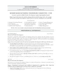 Definition Of Resume Template Delectable Chief Administrative Officer Resume Administrative Officer Resume