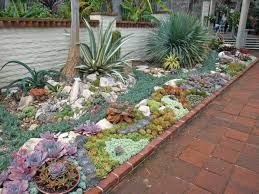 Small Picture Succulent Garden Designs Inspirations Also Picture Hamiparacom