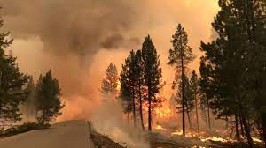 Bootleg Fire grows another 50,000 acres ...