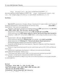 Senior Programmer Analyst Resume Sample Cover Letter Programmer