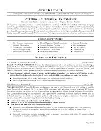 Executive Resume Examples And Samples Executive Resume Formats ...