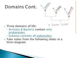 Three Domains Of Life Venn Diagram In English Wolverine Ppt Video Online Download