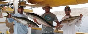Tony Reyes Fishing Tours San Felipe Baja Mexico