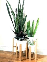 wood plant wooden plant stand plans wood plant stands outdoor wooden plant stands mid century modern wood plant wood slice plant stand