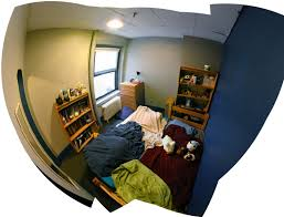 random hall rooms mit admissions my favorite part of cory s room is out a doubt his plushies the story goes that mustache bunny theodore wanting a big strong son mated a cow