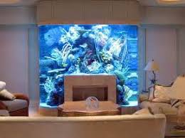 Fish Tank Bed.