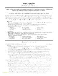 Sample Of Resume For Security Guard Or Special Abilities Resume