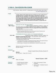 Bination Resume Template Word Resume Templates Hybrid Resume Example ...