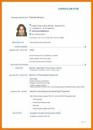 English Curriculum Vitae 9 10 Curriculum Vitae English Sample Internship