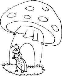 Disegni Animali Del Bosco Da Colorare Az Colorare