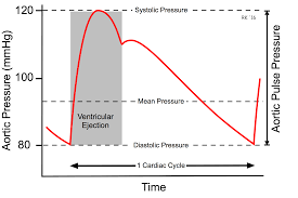 Narrow Pulse Pressure Chart Cv Physiology Arterial And Aortic Pulse Pressure