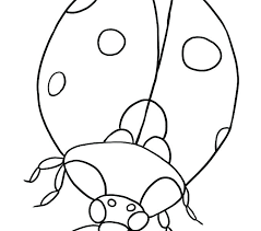 eric carle firefly coloring page ladybug coloring page and free the very on coloring grouchy ladybug